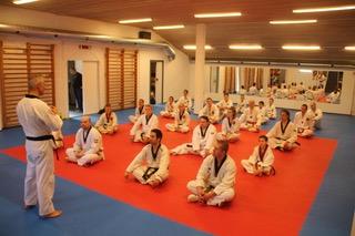 odense taekwondo