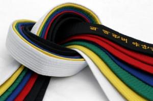 Team Odense Taekwondo Klub - Nyt medlem